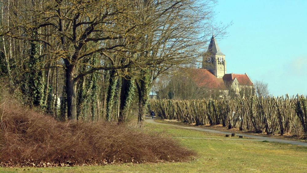 Eglise de Brenouille 2018